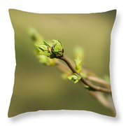 To The Sun - Featured 3  Throw Pillow