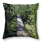To The Trout Stream Throw Pillow
