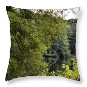 To Walk Beside Still Waters Throw Pillow