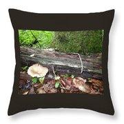 Toad 1 Throw Pillow