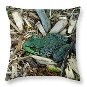 Toad Master Throw Pillow