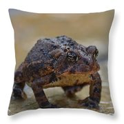 Toad Takes A Stance Throw Pillow