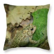 Toad Under Cover  Throw Pillow