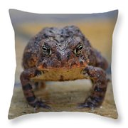 Toad With An Attitude Throw Pillow