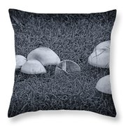 Toadstools V6 Throw Pillow by Douglas Barnard