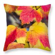 Toasted Autumn - Featured 3 Throw Pillow