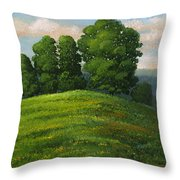 Toboggan Hill Throw Pillow