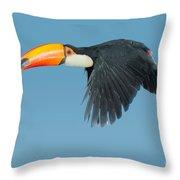 Toco Toucan In Flight Throw Pillow
