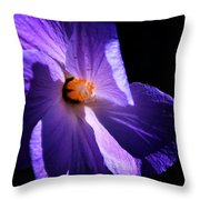 Todays'  Blessing Throw Pillow by Camille Lopez