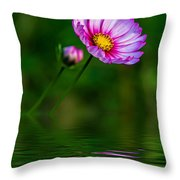 Together...always Reflection Throw Pillow
