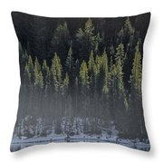 Toiga Lake Throw Pillow