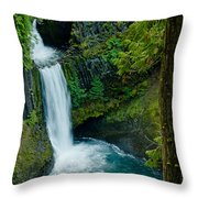 Toketee Falls Throw Pillow