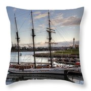 Tole Mour For Sale Throw Pillow