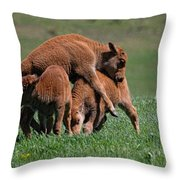 Tom Foolery Throw Pillow