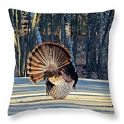 Tom Turkey Fan Throw Pillow