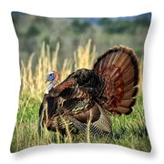 Tom Turkey Throw Pillow by Jaki Miller