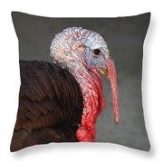 Tom Turkey Portrait Throw Pillow
