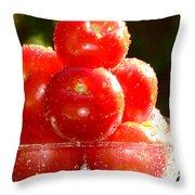 Tomatoes 2 Throw Pillow