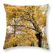 Tombs Under Oaktree Throw Pillow