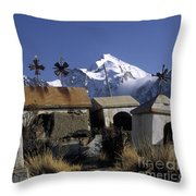 Tombs With A View Throw Pillow