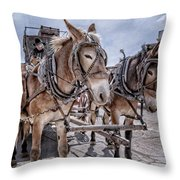 Tombstone Mules Throw Pillow