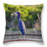 Tomoka Marsh Little Blue Heron Throw Pillow