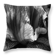 Tones Of Iris Throw Pillow