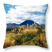 Tongariro National Park New Zealand Throw Pillow