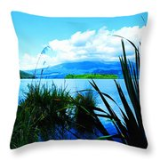 Tongariro National Park Oil On Canvas Throw Pillow