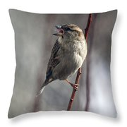 Tongue Of The Sparrow Throw Pillow