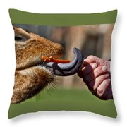 Carrots Are Good For You Throw Pillow