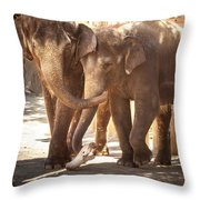 Tons Of Fun Throw Pillow