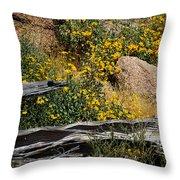 Tonto Deadwood 18187 Throw Pillow