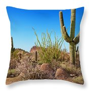 Tonto National Forest Cactus Throw Pillow