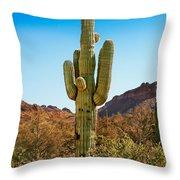 Tonto National Forest Saguaro Throw Pillow