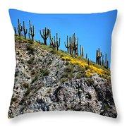 Tonto Ridge 16112 2 Throw Pillow