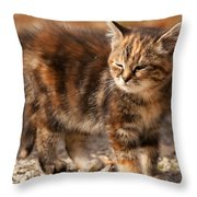 Too Bright Throw Pillow