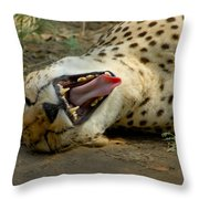 Too Funny Throw Pillow