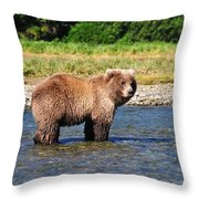 Too Much Attention Throw Pillow