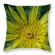 Too Pretty To Be A Weed Throw Pillow