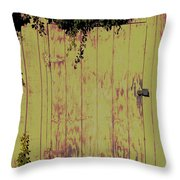 Tool Shed One Throw Pillow