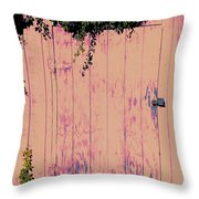 Tool Shed Two Throw Pillow