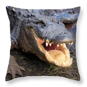 Toothy Grin Throw Pillow by Adam Jewell