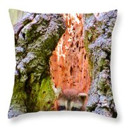 Top Floor Studio Throw Pillow
