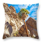 Top Of A Palm Near Top Of Andreas Canyon-ca Throw Pillow