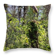 Top Of The Glades Throw Pillow