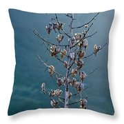 Topanga Canyon Flora #1 Throw Pillow