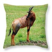 Topi Antelope On The Masai Mara Throw Pillow
