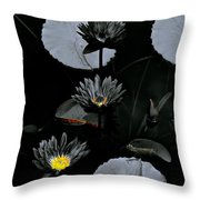 Torchlight Water Flowers Throw Pillow