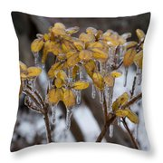 Toronto Ice Storm 2013 - My Garden In The Morning Throw Pillow